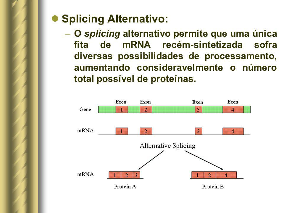 Splicing Alternativo: