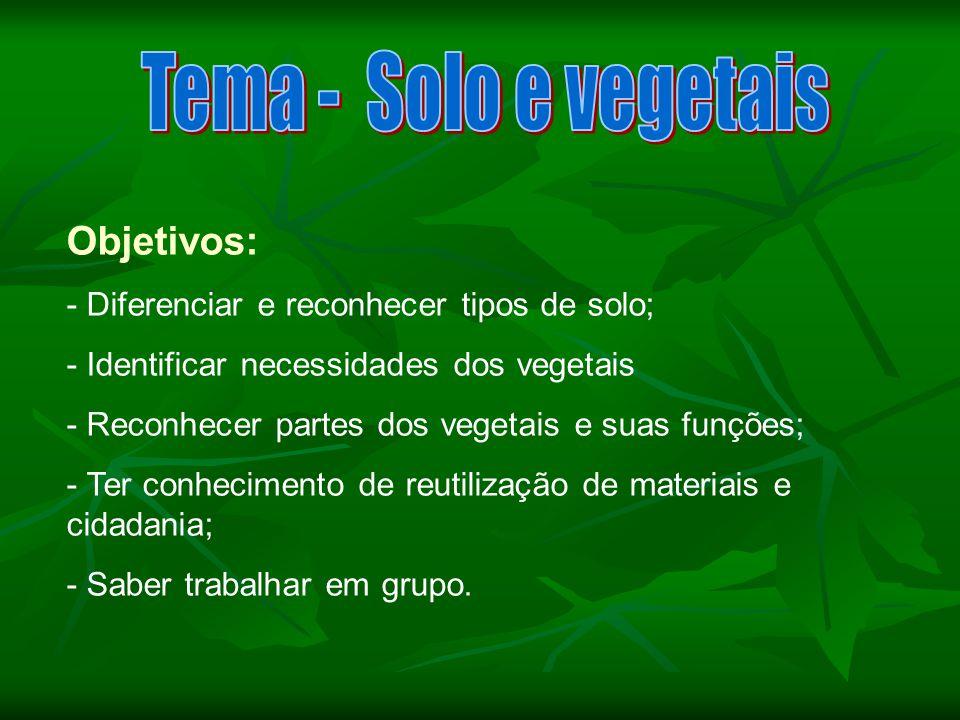 Tema - Solo e vegetais Objetivos: