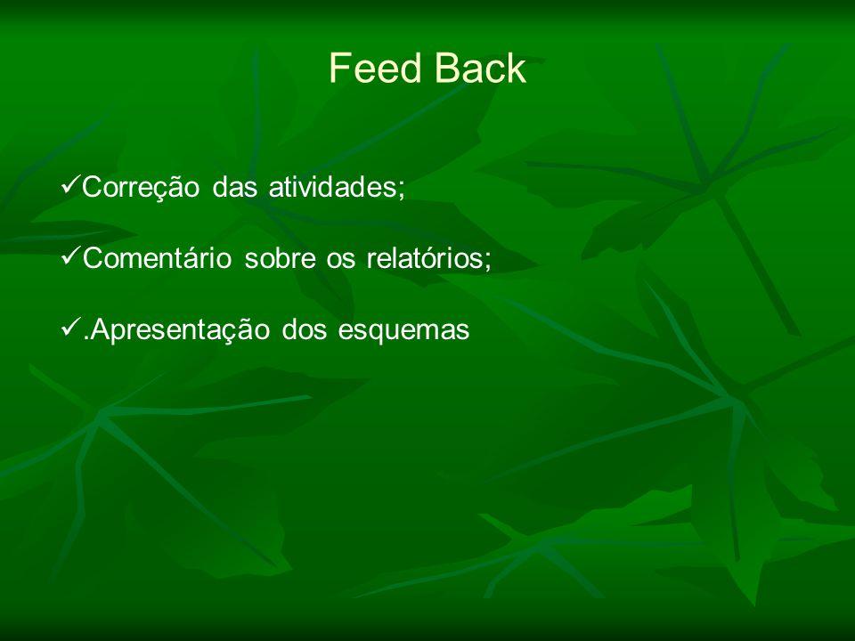 Feed Back Correção das atividades; Comentário sobre os relatórios;