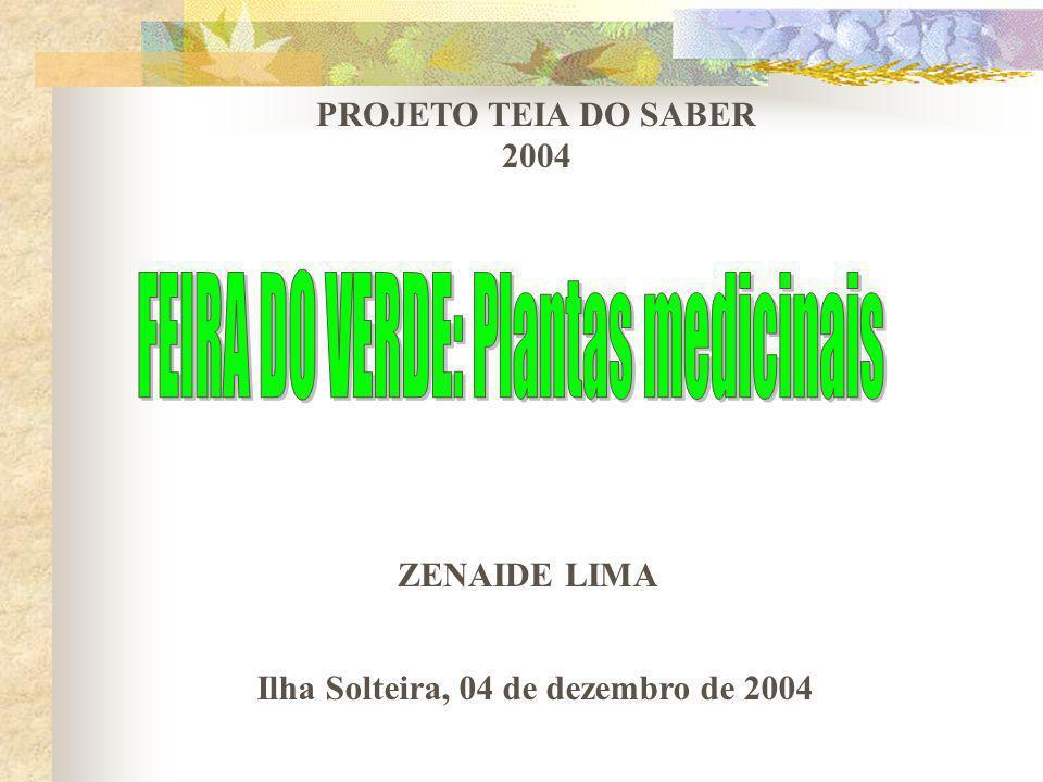 FEIRA DO VERDE: Plantas medicinais