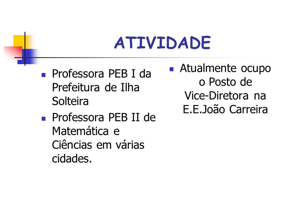Atualmente ocupo o Posto de Vice-Diretora na E.E.João Carreira