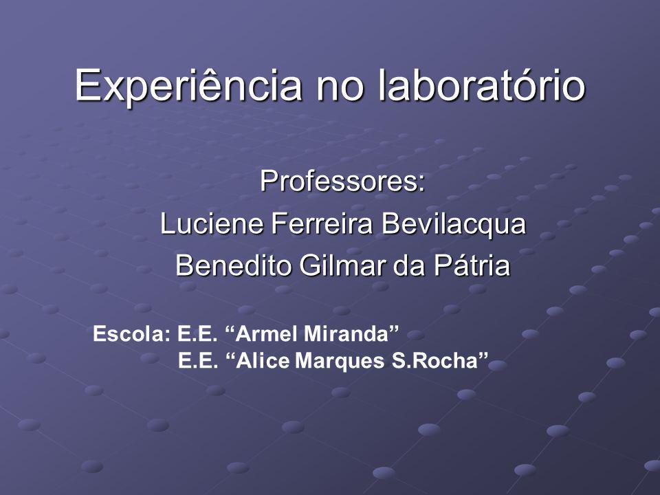 Experiência no laboratório