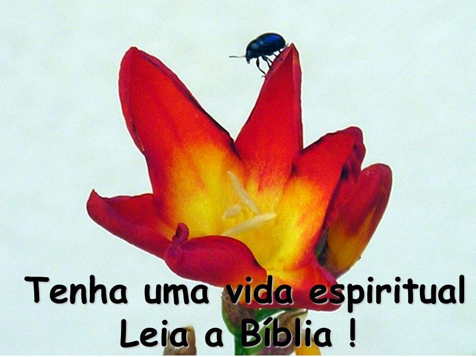 Tenha uma vida espiritual