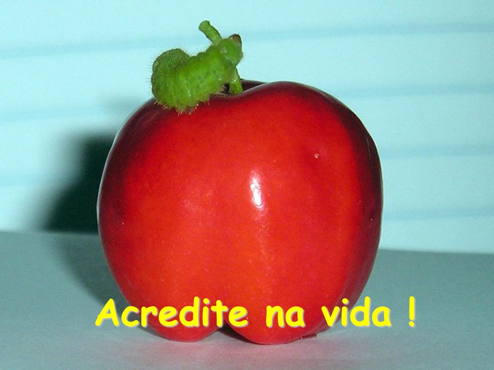 Acredite na vida !