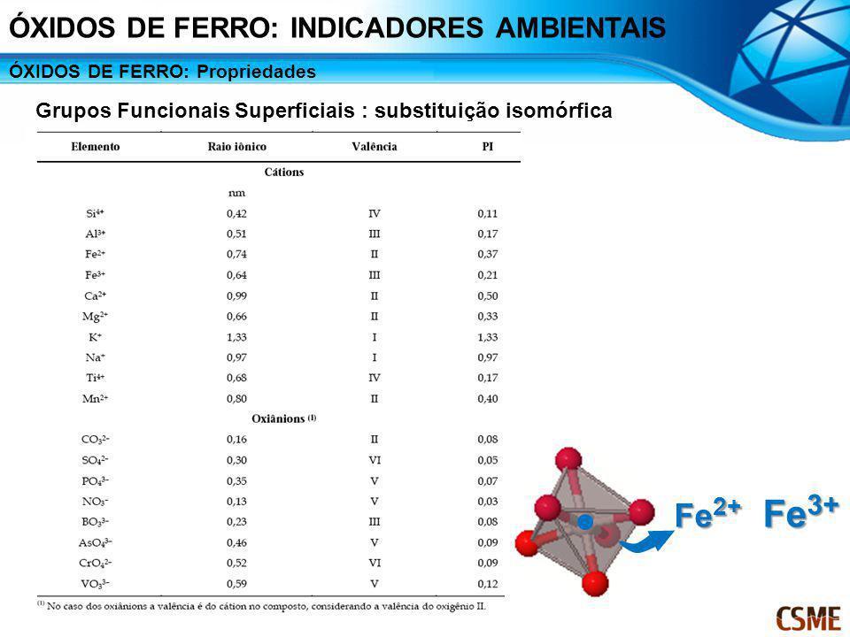Fe2+ Fe3+ ÓXIDOS DE FERRO: INDICADORES AMBIENTAIS