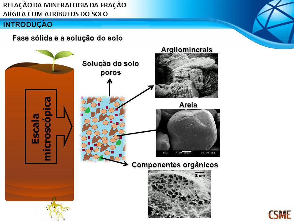 Escala microscópica RELAÇÃO DA MINERALOGIA DA FRAÇÃO