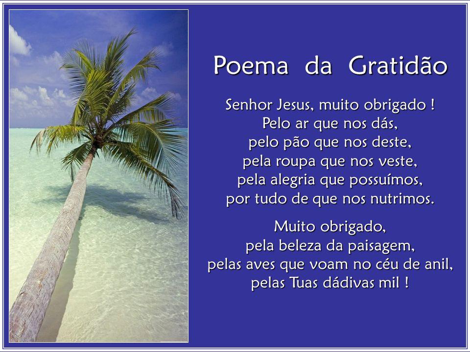 Poema da Gratidão Senhor Jesus, muito obrigado ! Pelo ar que nos dás,