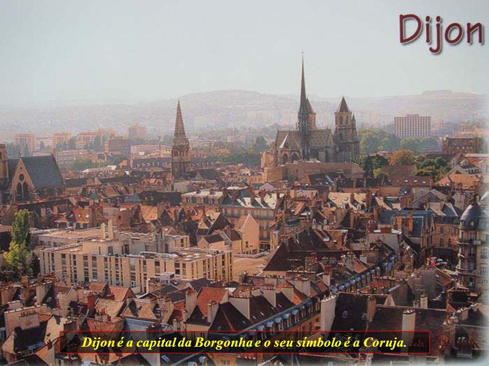Dijon é a capital da Borgonha e o seu símbolo é a Coruja.