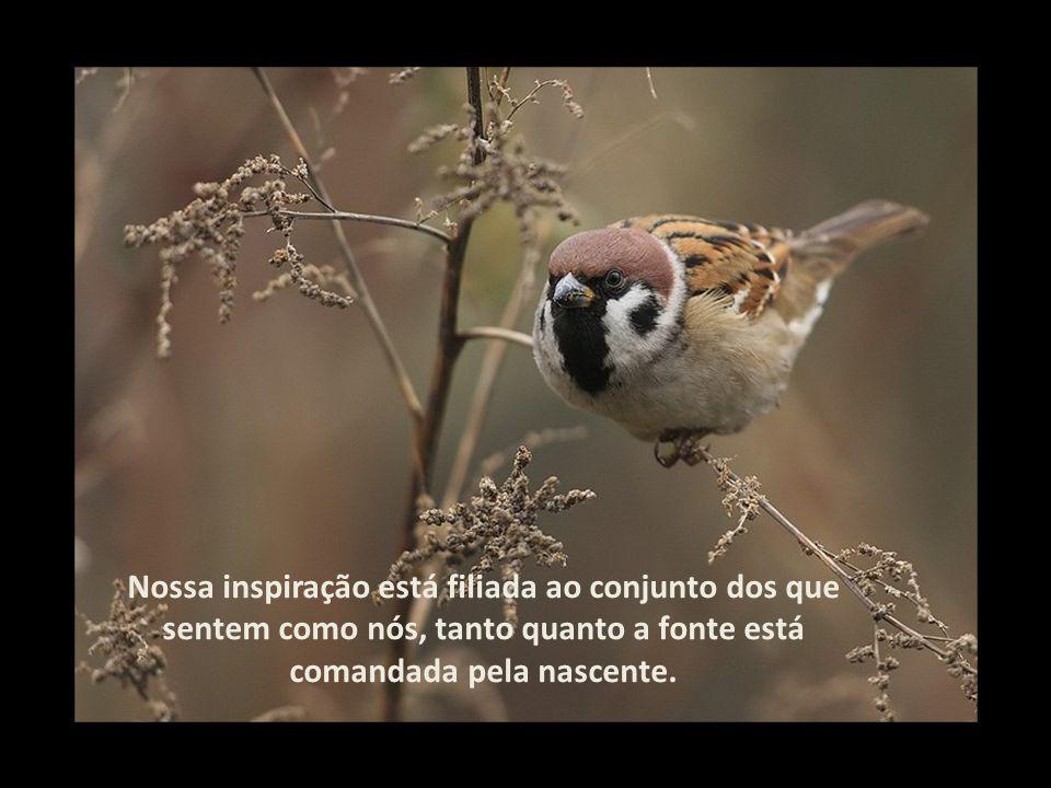 Nossa inspiração está filiada ao conjunto dos que sentem como nós, tanto quanto a fonte está comandada pela nascente.