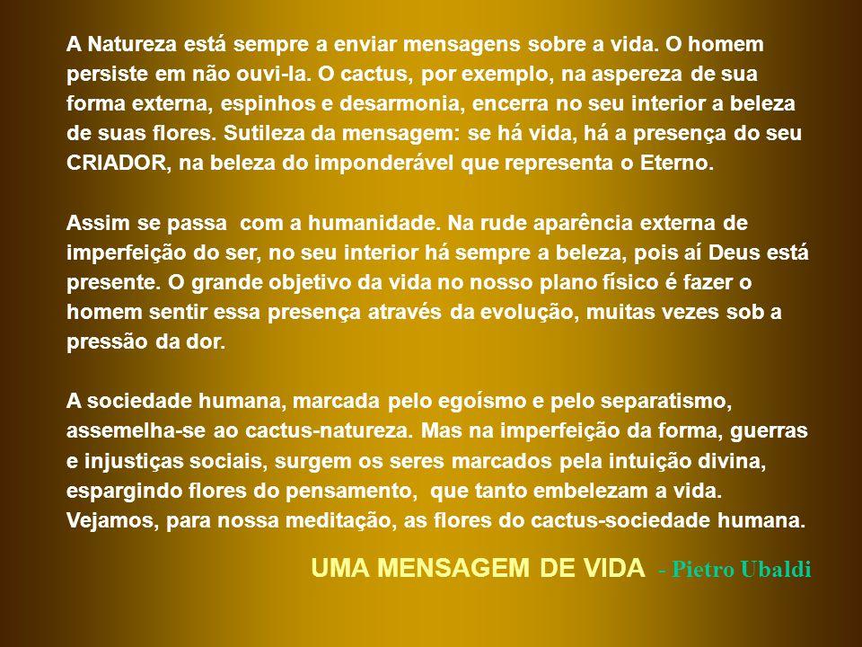 UMA MENSAGEM DE VIDA - Pietro Ubaldi
