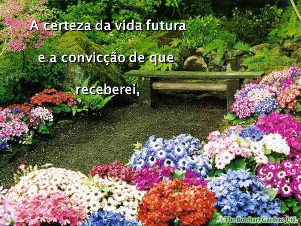 A certeza da vida futura