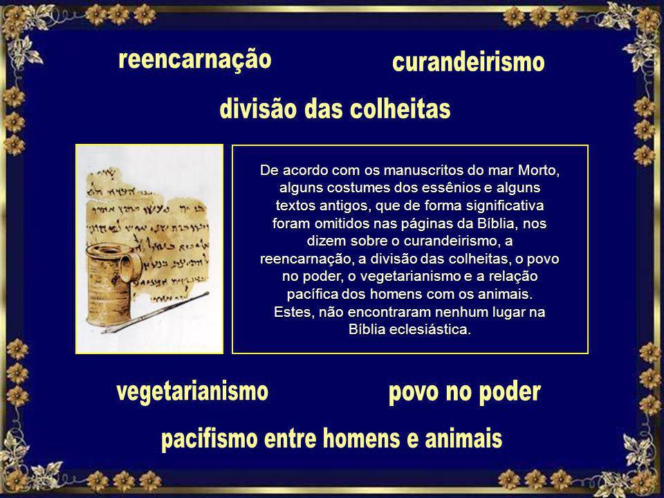 pacifismo entre homens e animais