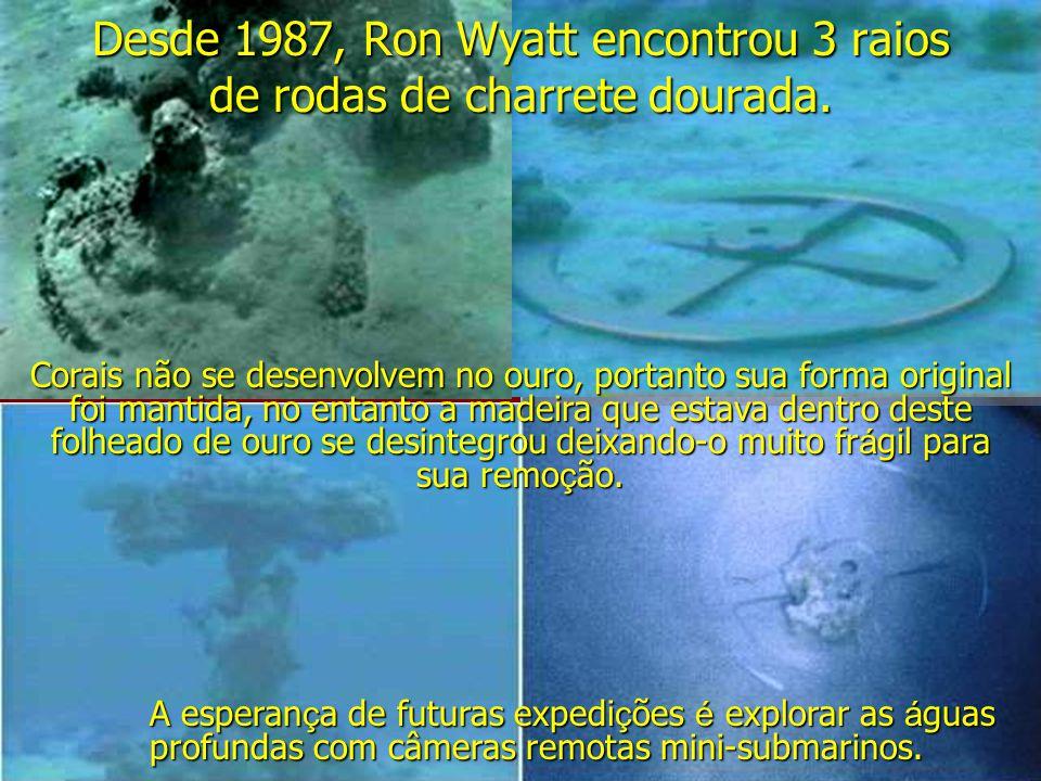 Desde 1987, Ron Wyatt encontrou 3 raios de rodas de charrete dourada.