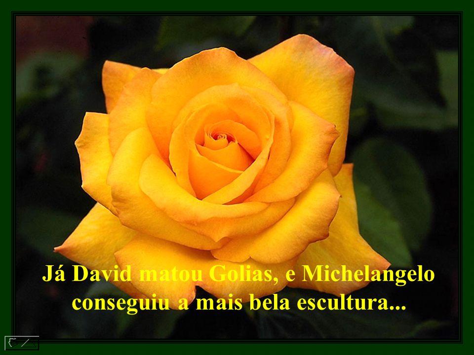 Já David matou Golias, e Michelangelo conseguiu a mais bela escultura...