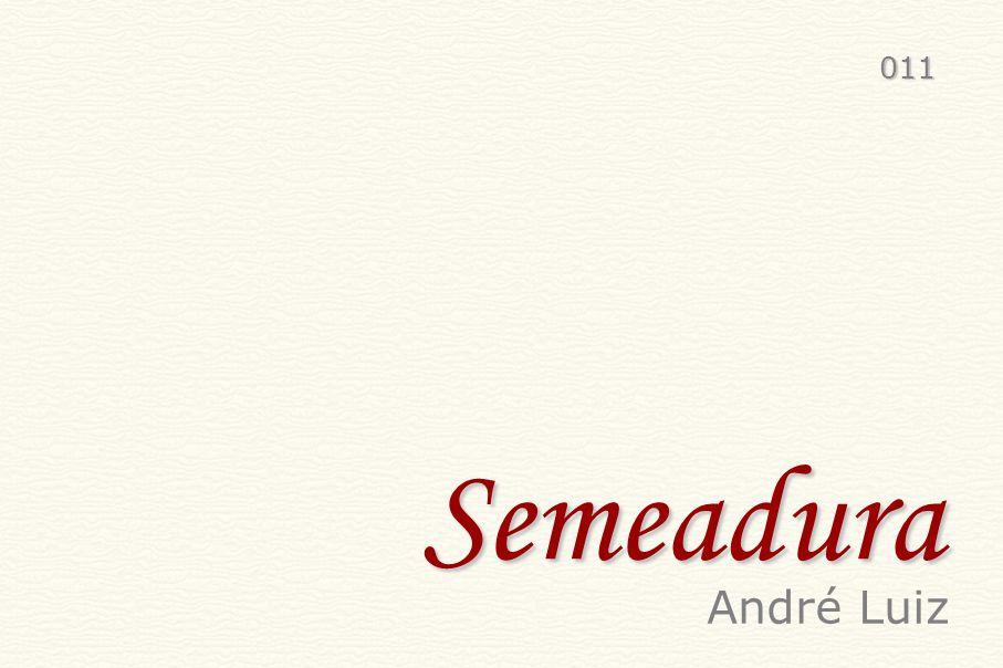 011 Semeadura André Luiz