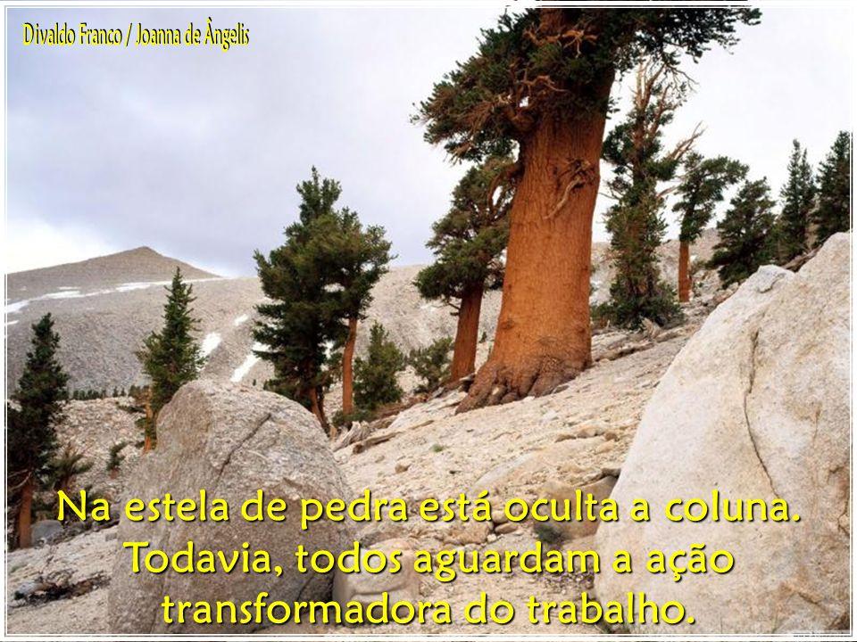 Na estela de pedra está oculta a coluna.