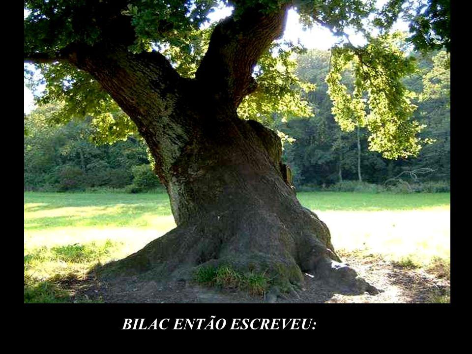 © BILAC ENTÃO ESCREVEU: