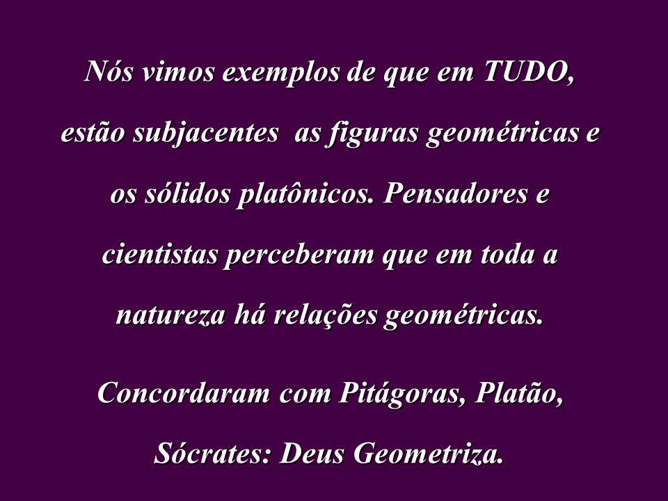 Concordaram com Pitágoras, Platão, Sócrates: Deus Geometriza.