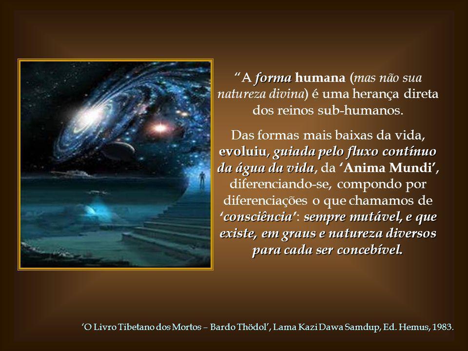 A forma humana (mas não sua natureza divina) é uma herança direta dos reinos sub-humanos.