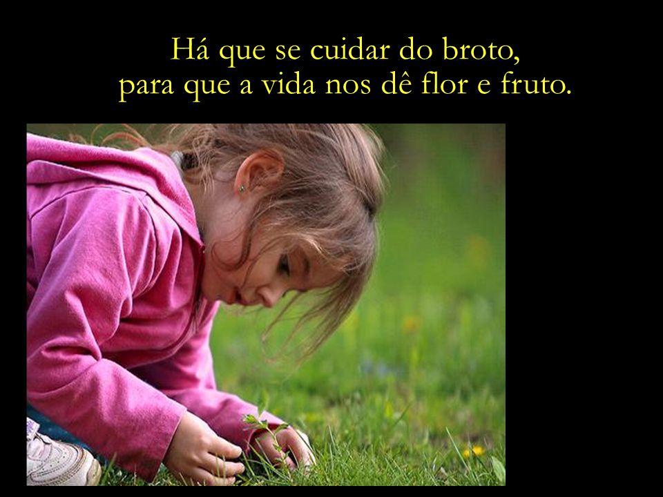 Há que se cuidar do broto, para que a vida nos dê flor e fruto.