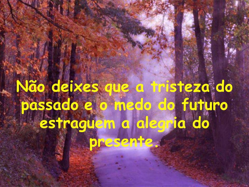 Não deixes que a tristeza do passado e o medo do futuro estraguem a alegria do presente.