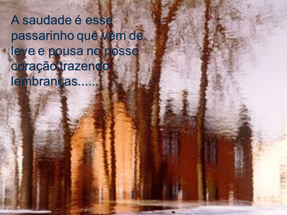 A saudade é esse passarinho que vem de leve e pousa no nosso coração trazendo lembranças......