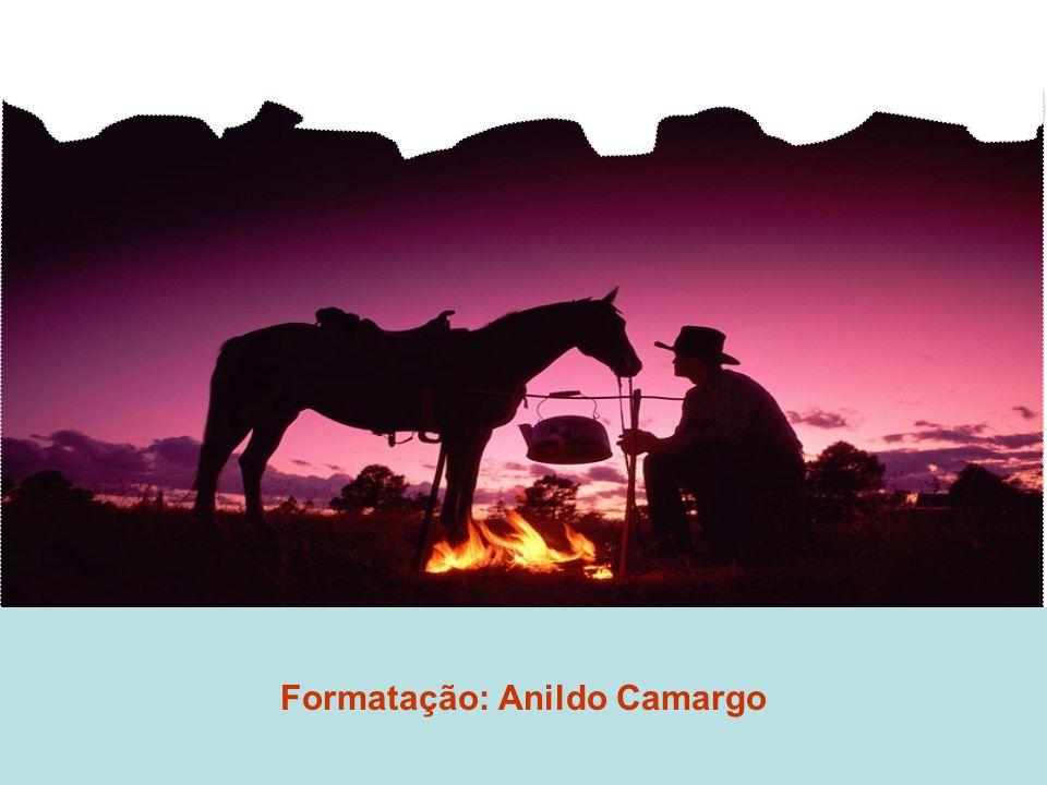 Formatação: Anildo Camargo