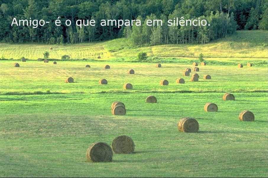 Amigo- é o que ampara em silêncio.