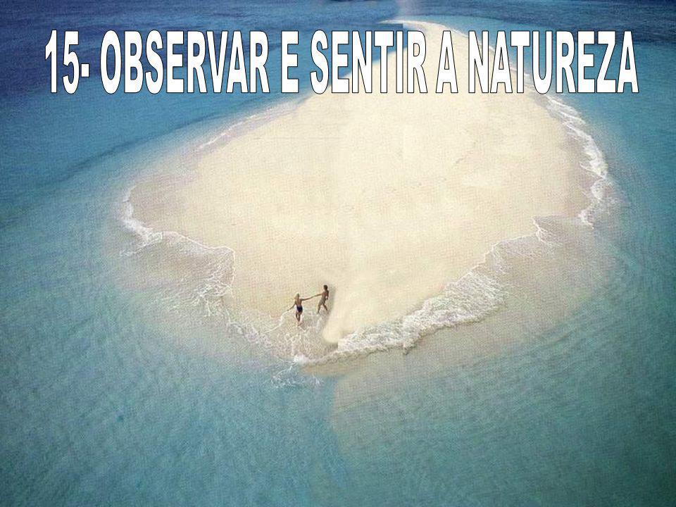 15- OBSERVAR E SENTIR A NATUREZA