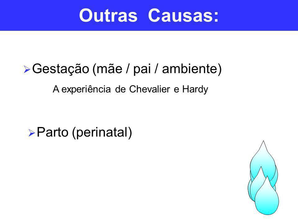 Outras Causas: Gestação (mãe / pai / ambiente) Parto (perinatal)