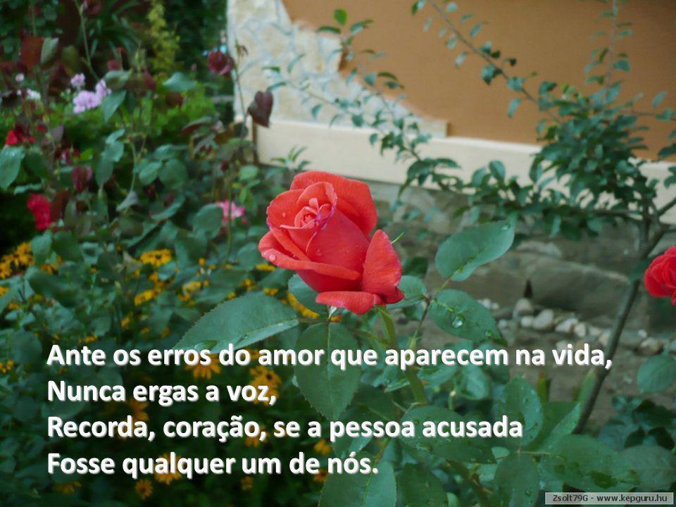 Ante os erros do amor que aparecem na vida,