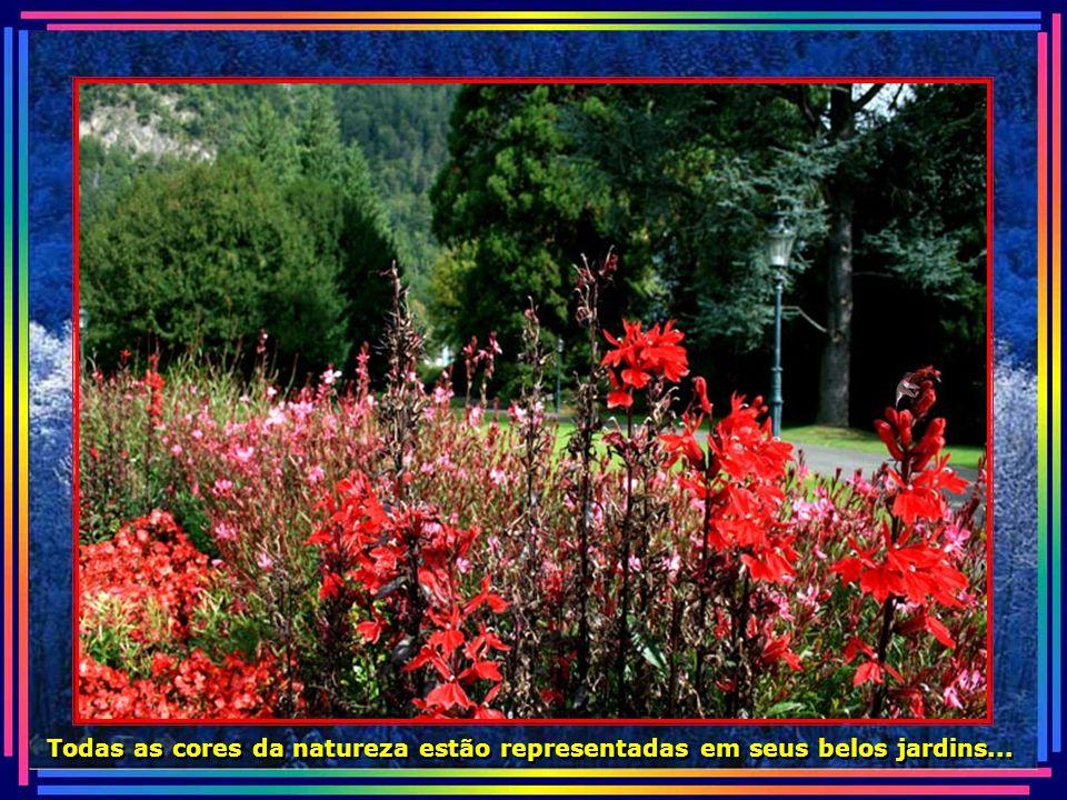 IMG_3527 - SUIÇA - INTERLAKEN-670.jpg