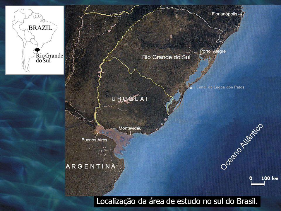 Localização da área de estudo no sul do Brasil.