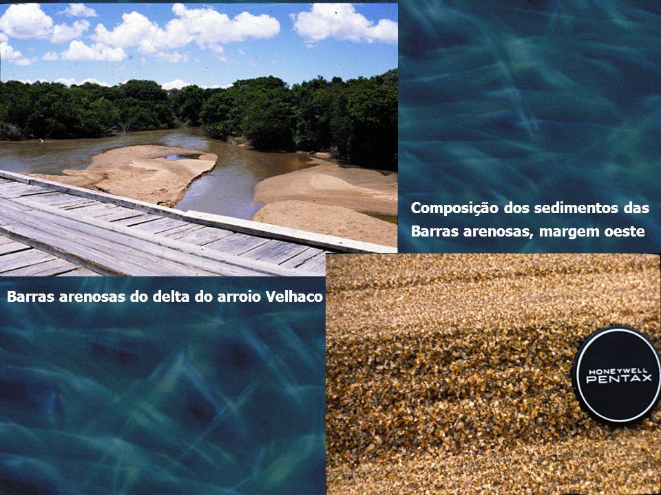 Composição dos sedimentos das