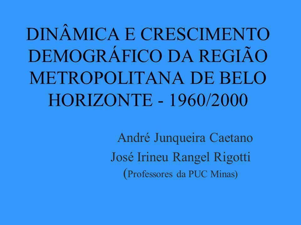 José Irineu Rangel Rigotti (Professores da PUC Minas)