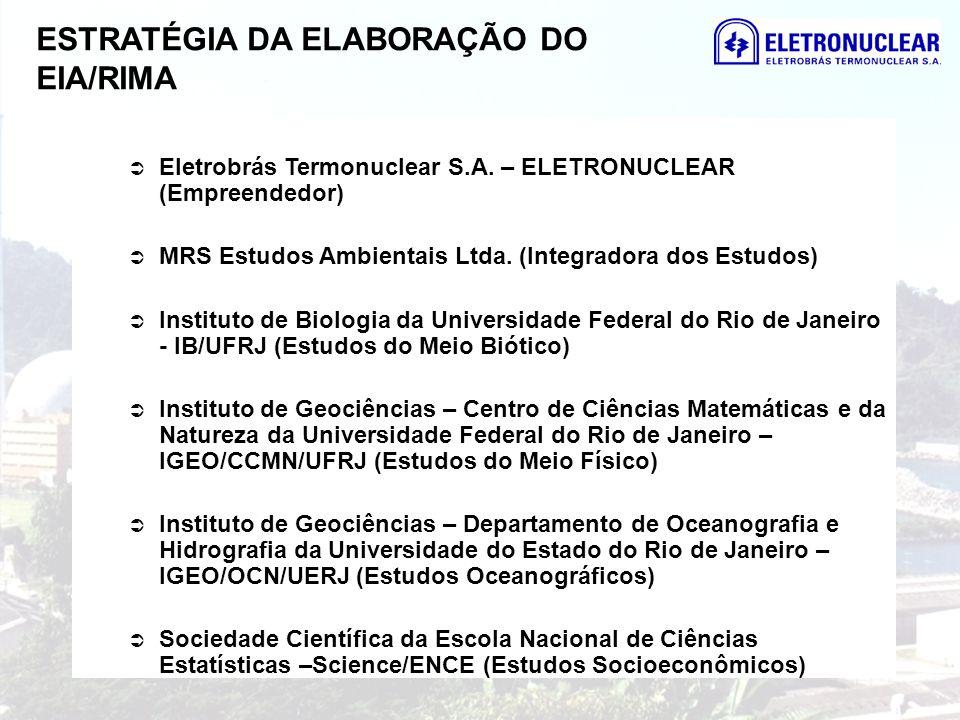 ESTRATÉGIA DA ELABORAÇÃO DO EIA/RIMA