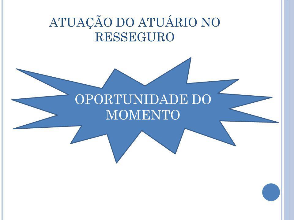 ATUAÇÃO DO ATUÁRIO NO RESSEGURO