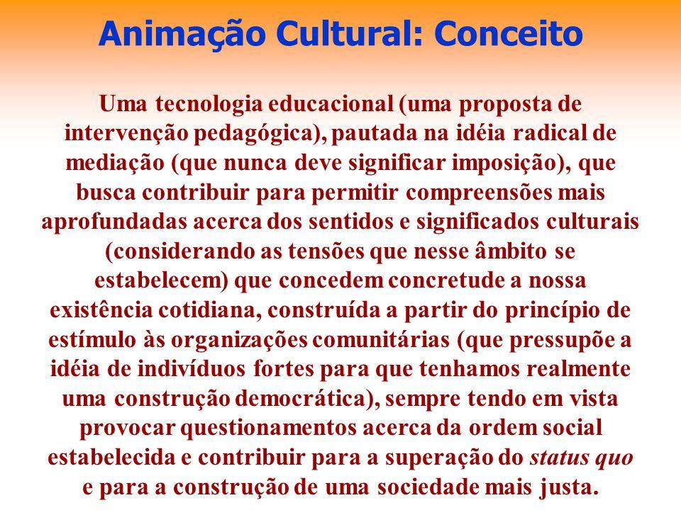 Animação Cultural: Conceito