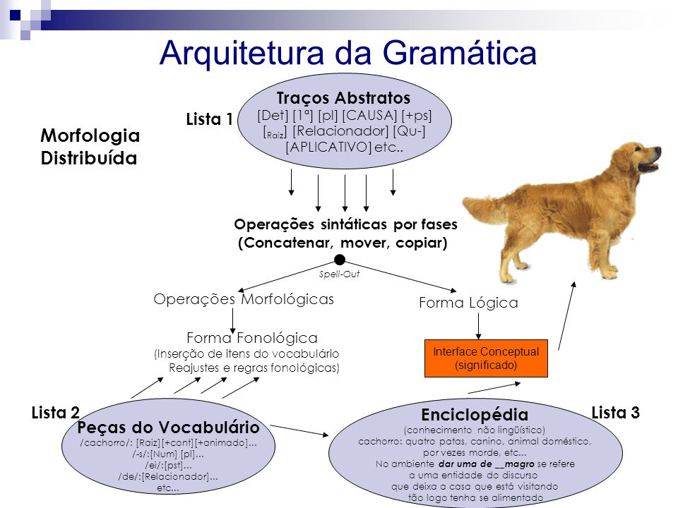 Arquitetura da Gramática