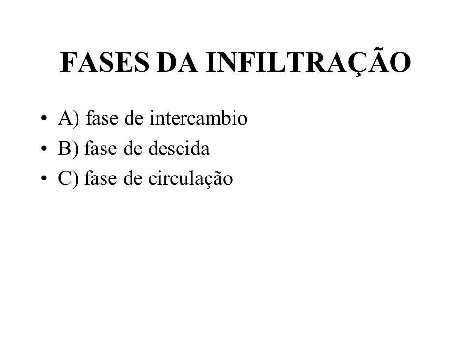 FASES DA INFILTRAÇÃO A) fase de intercambio B) fase de descida