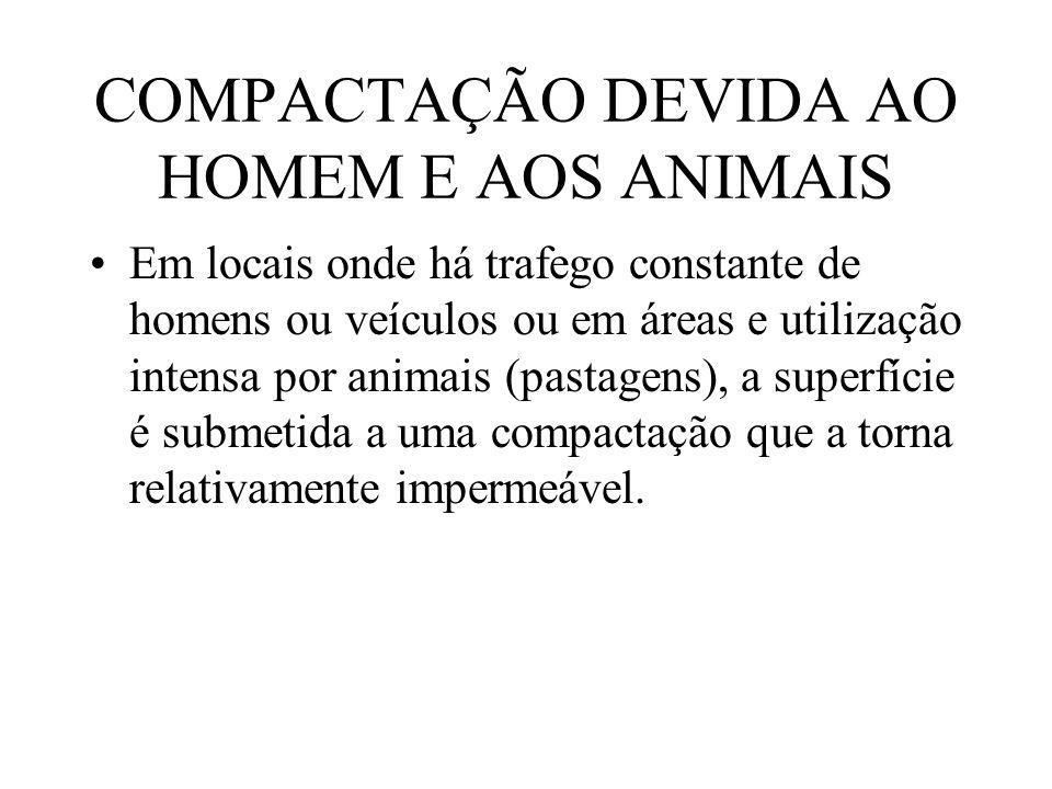 COMPACTAÇÃO DEVIDA AO HOMEM E AOS ANIMAIS