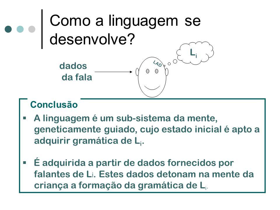 Como a linguagem se desenvolve