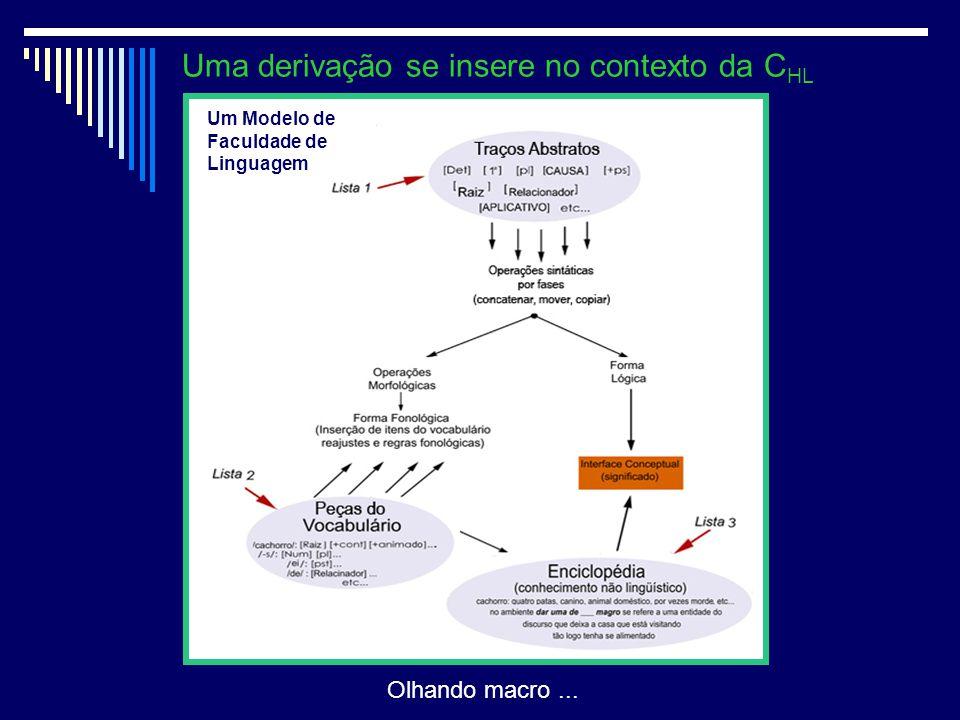 Uma derivação se insere no contexto da CHL