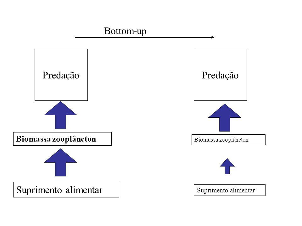 Bottom-up Predação Predação Suprimento alimentar Biomassa zooplâncton