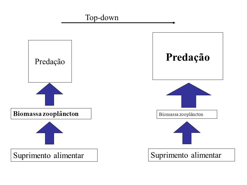 Predação Top-down Predação Suprimento alimentar Suprimento alimentar