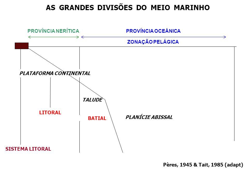 AS GRANDES DIVISÕES DO MEIO MARINHO