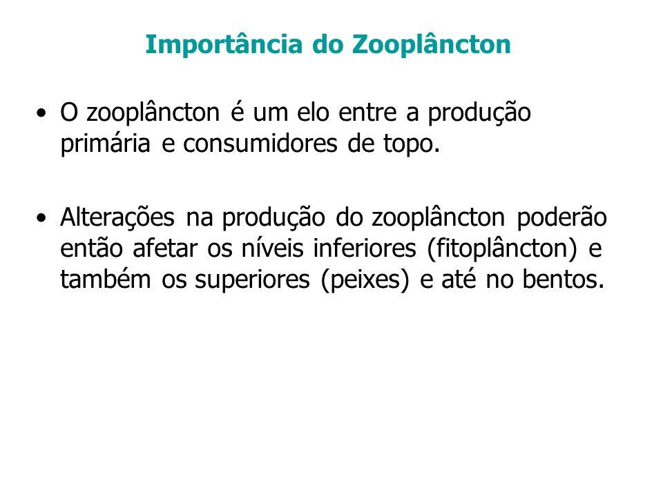 Importância do Zooplâncton