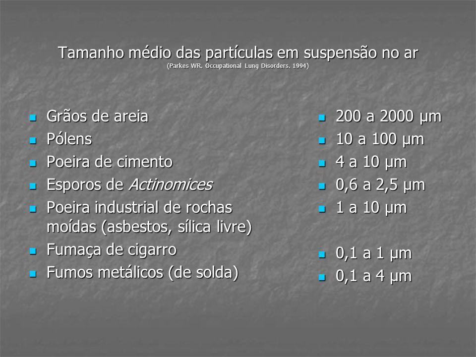 Tamanho médio das partículas em suspensão no ar (Parkes WR