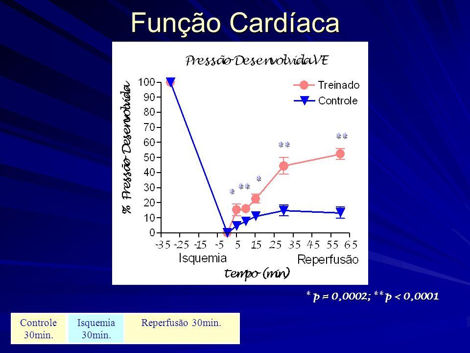 Função Cardíaca ** * * p = 0,0002; ** p < 0,0001 Controle 30min.