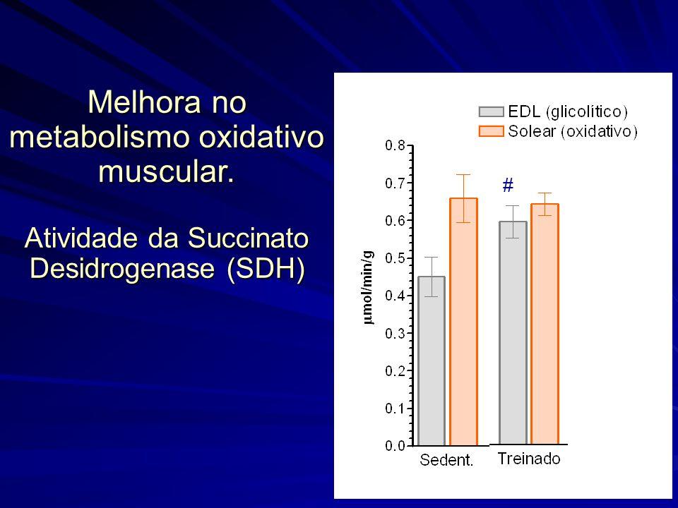 Melhora no metabolismo oxidativo muscular